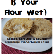 """Is Your Flour Wet?"" (a soaked grains eBook) No Longer Available"
