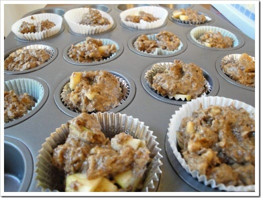 apple flax muffin batter (5) (500x375)