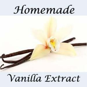 How to Make Homemade Vanilla Extract - Kitchen Stewardship