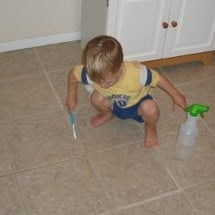 The Cheapest Green Cleaner I Know!