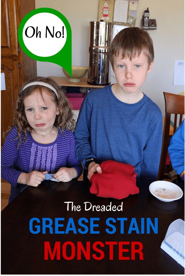 The Dreaded Grease Stain Monster what can a naturally minded mom do