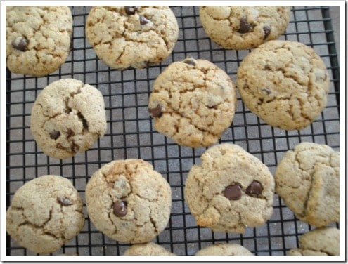 grain-free almond flour chocolate chip cookies (12) (475x356)