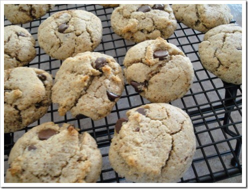 grain-free almond flour chocolate chip cookies (15) (475x356)