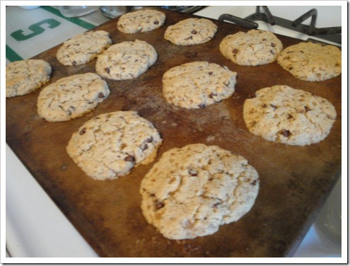 grain-free almond flour chocolate chip cookies (18) (475x356)