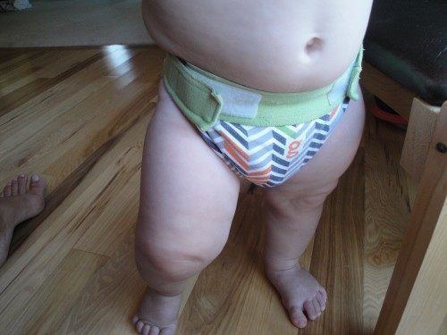 gdiapers review