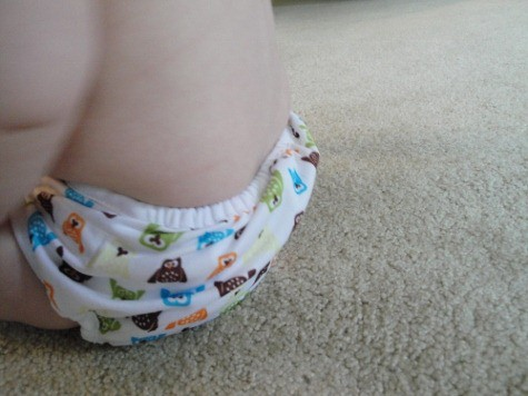thirstie duo cloth diaper