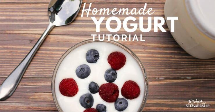 Homemade Yogurt Tutorial 1