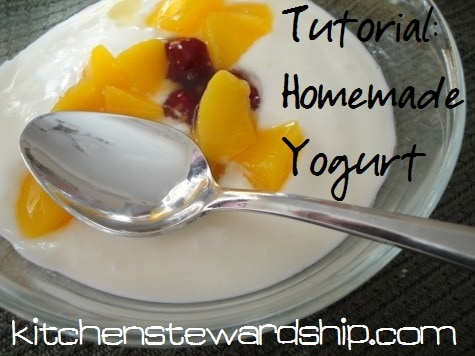 Homemade Yogurt Tutorial