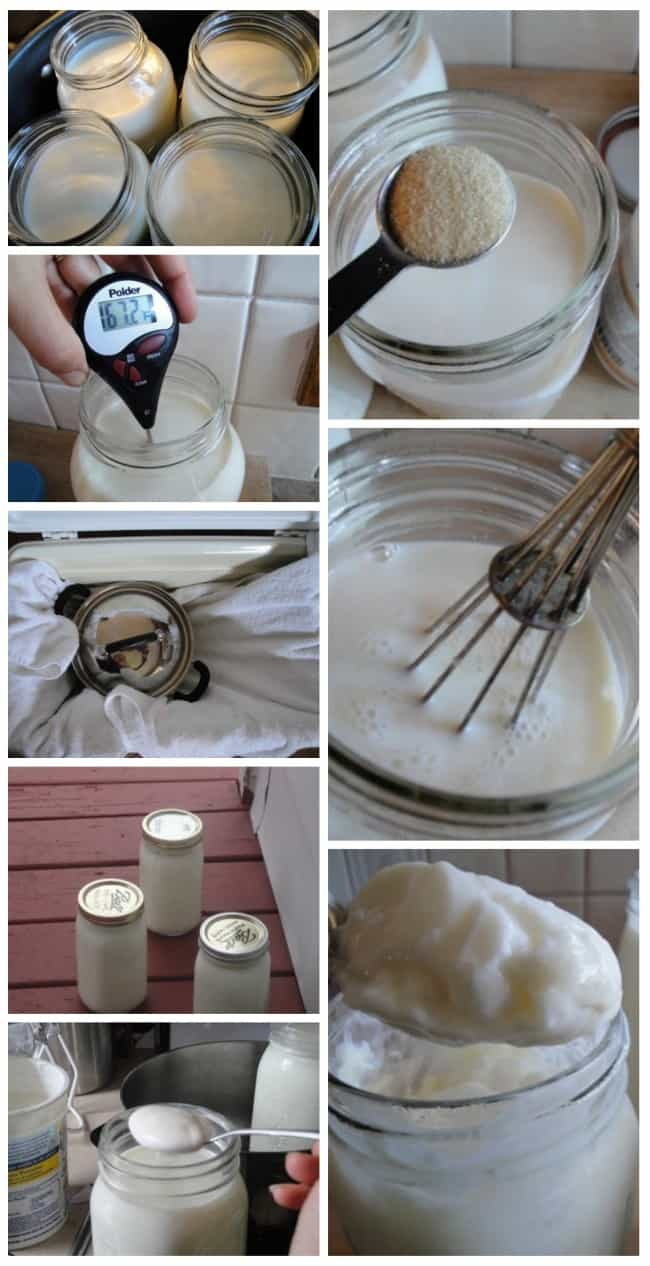 How to make THICK Yogurt