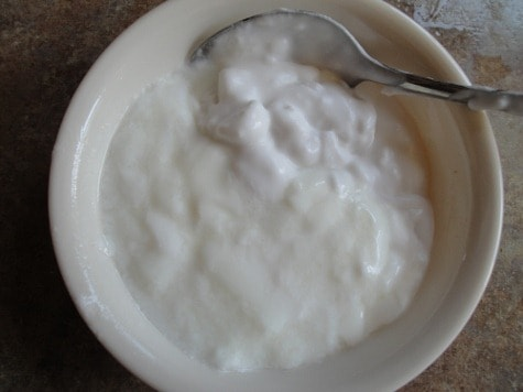 gelatin coconut milk yogurt