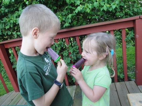 two kids eating homemade sugar free popsicle recipe