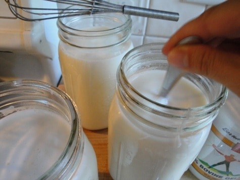 making homemade yogurt (raw) with gelatin