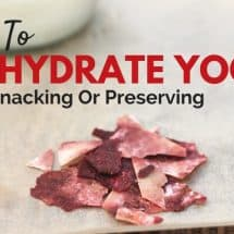 How to Dehydrate Yogurt: A Healthy Snack or Long-Term Storage Option