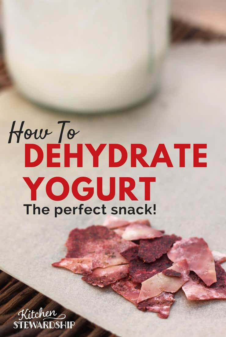 Turn fruit and yogurt into a grab and go finger food. Mix and dehydrate. It's that simple.