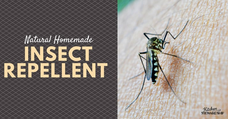 Facebook Natural Insect Repellent Options
