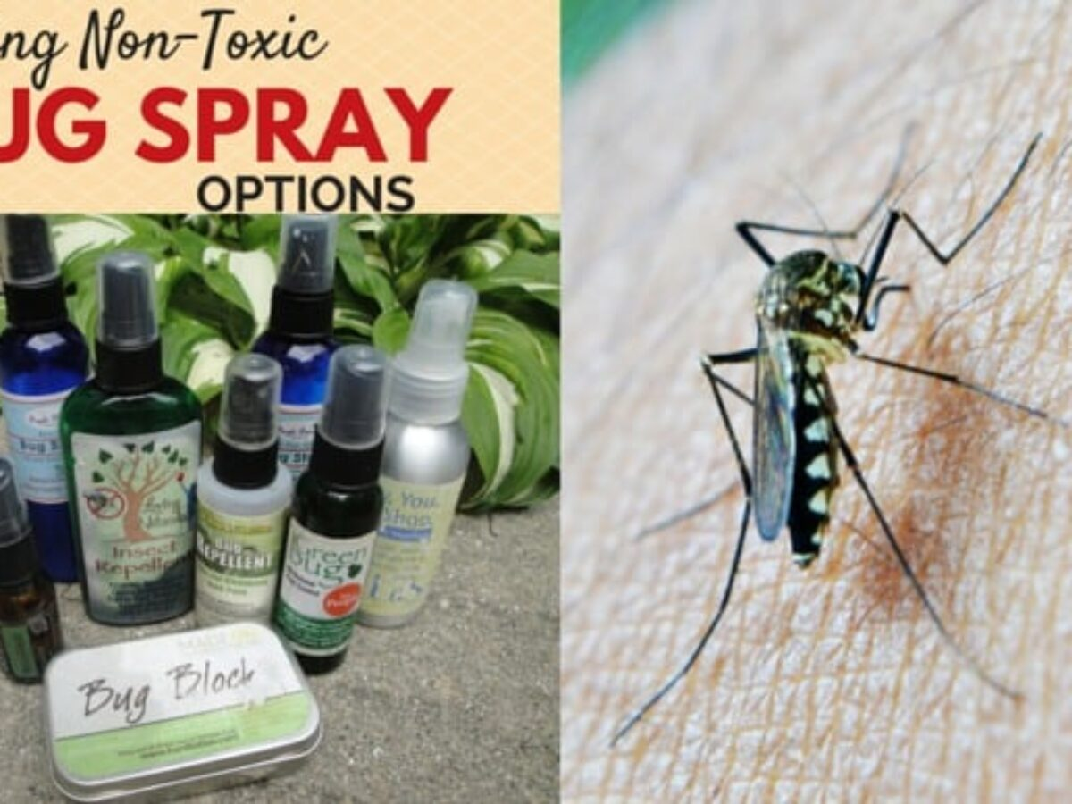 The Best All Natural Bug Spray
