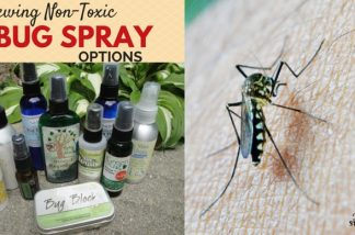 Finding the Best All Natural Bug Spray