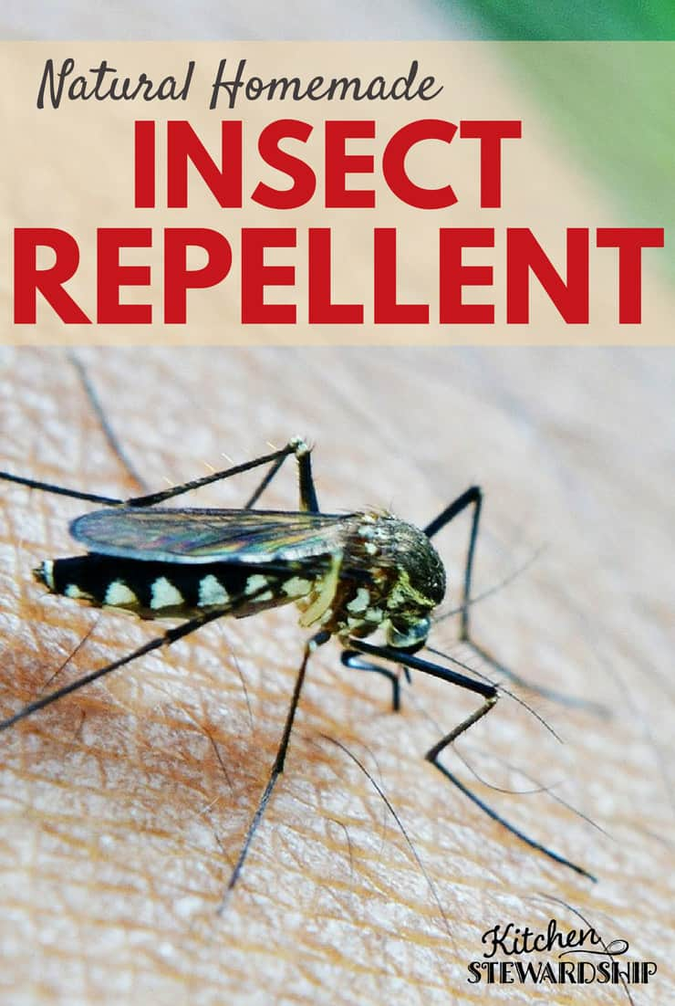Use these natural, homemade insect repellent options and recipes to keep the bugs away safely!