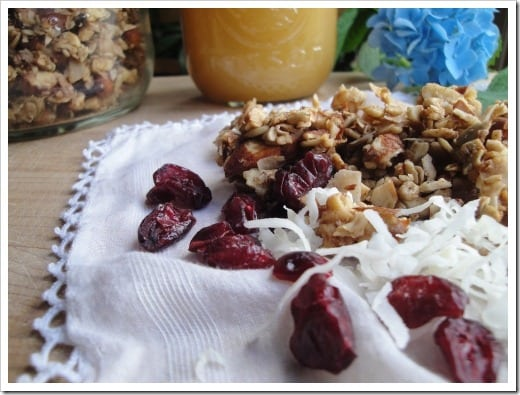 grain free homemade granola smaller (5)