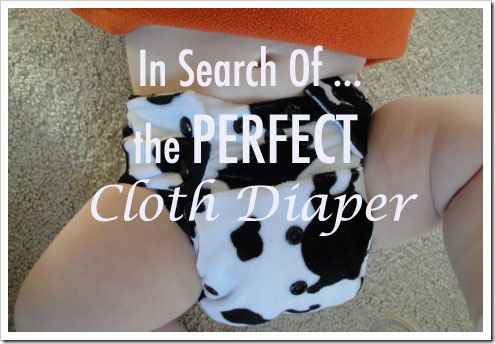 go green pocket diaper cow print