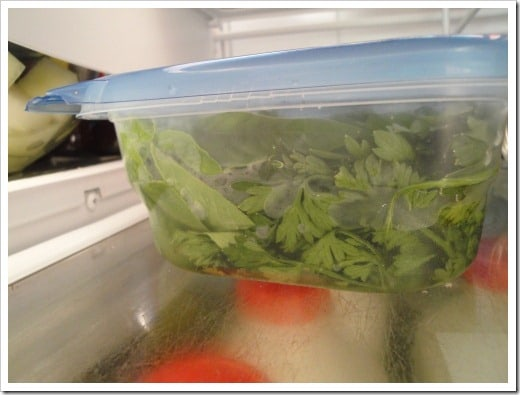 How to Store Fresh Herbs the easy way