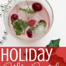2012 Holiday Gift Guide from Kitchen Stewardship