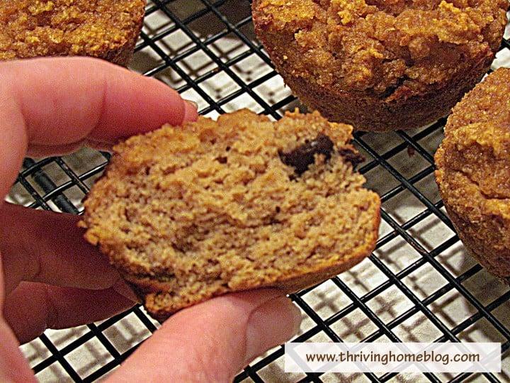 Coconut Flour Pumpkin Chocolate Chips Muffins