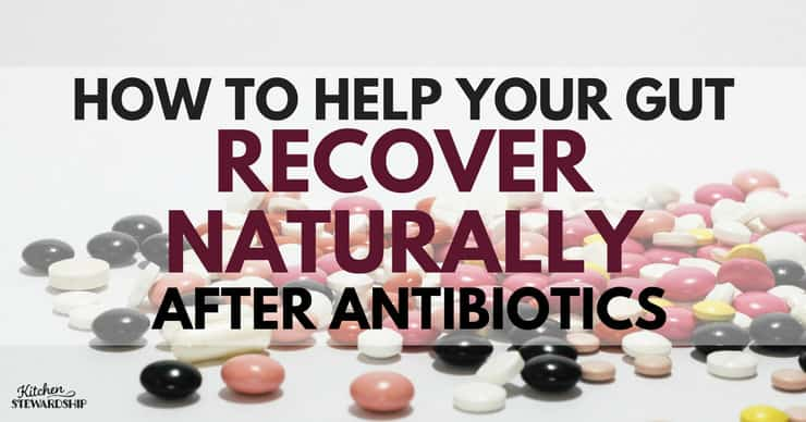 How to Help Your Gut Recover Naturally After Antibiotics