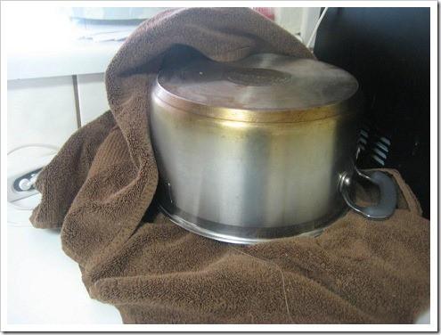 Pot-Covering-Yogurt