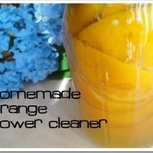How to Make Homemade Orange Power Cleaner