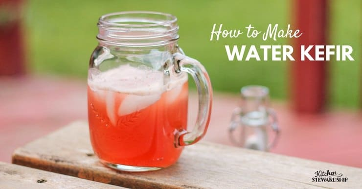 How to Make Water Kefir - an easy probiotic drink!