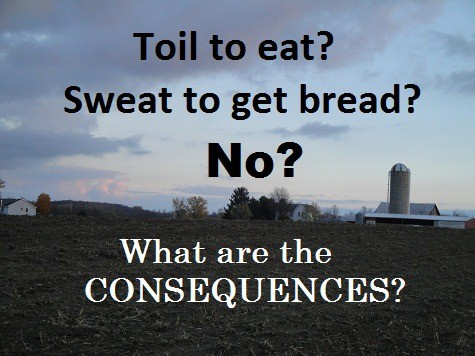 If you Don't Toil to eat Sweat to get Bread - What are the Consequences