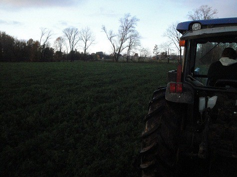 plowing the field with tractor