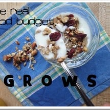Brace Yourselves…the 2012 Food Budget May Shock You! {Eating Well, Spending…Hmmmmm…}