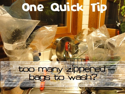Reuse Zippered Bags but Save on Dishes