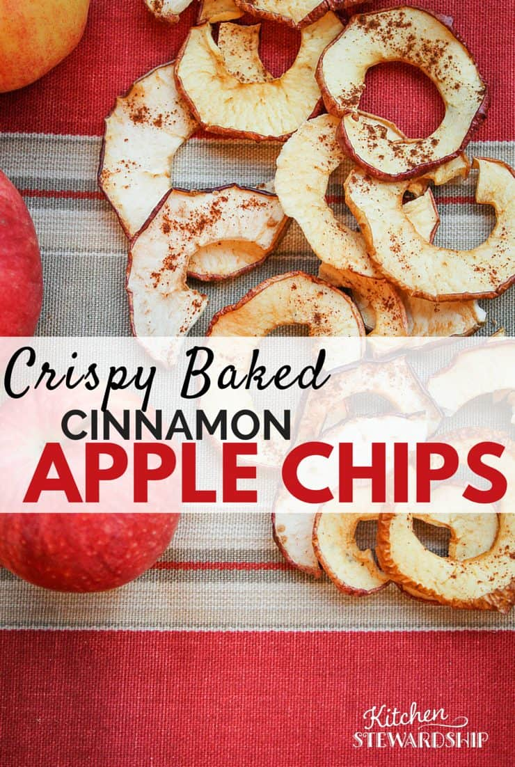 Make your own crispy apple chips without a dehydrator! Kids love this simple fall snack with a touch a cinnamon.