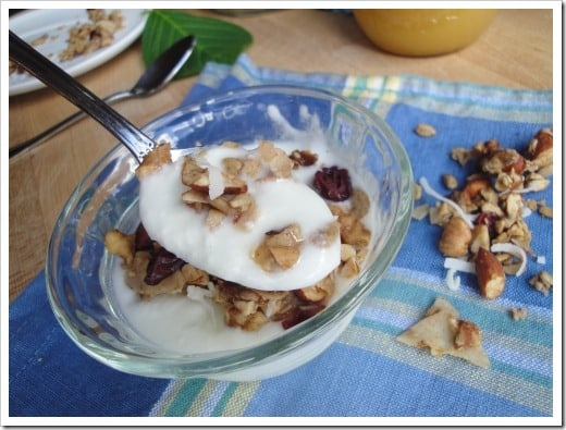 grain free homemade granola smaller (12)