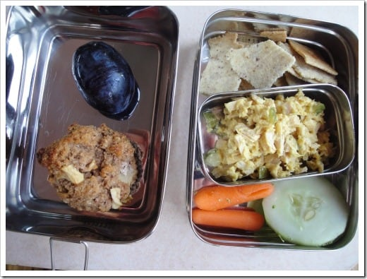 ecolunchgear lunch example egg salad (2) (500x375)