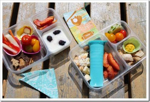 lunch example in Ziploc divided container (2) (475x317)