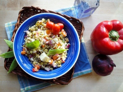 summer sprouted lentil salad