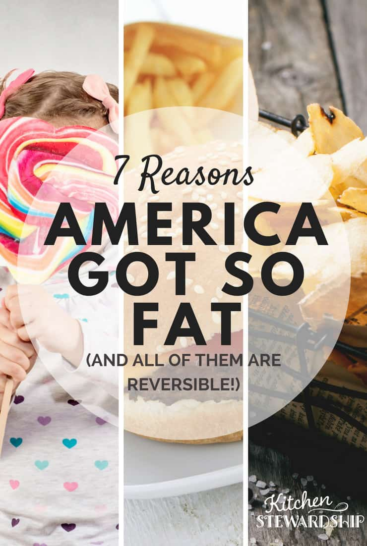 7 Reasons America is fat -  Tips for staying healthy