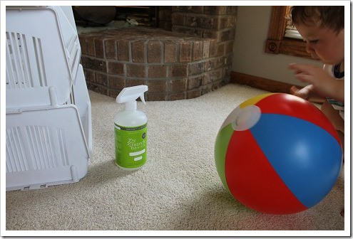 Branch Basics natural carpet cleaner (1)