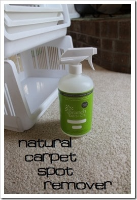 Branch Basics natural carpet cleaner spot removal