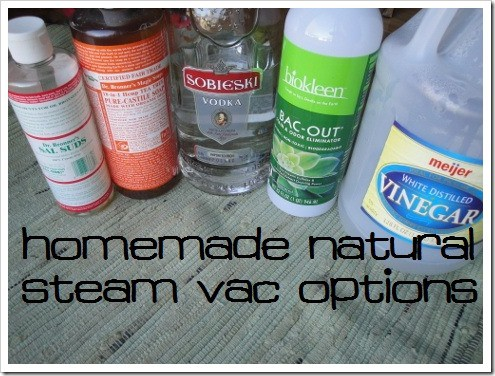 Natural Options for Steam Vacuums to Clean Carpets