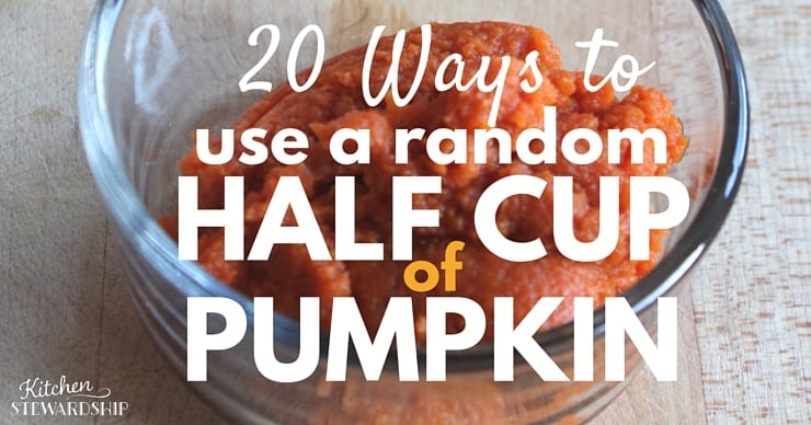 20 Ways to Use A Half Cup of Pumpkin