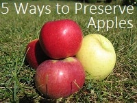 5 Ways to Preserve Apples