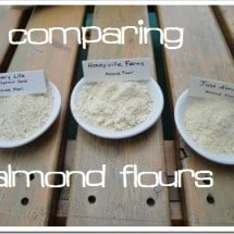An Almond Flour vs. Almond Meal Comparison {& Review of Various Brands}