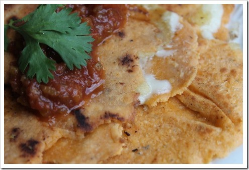 grain free tomato tortillas quesadillas