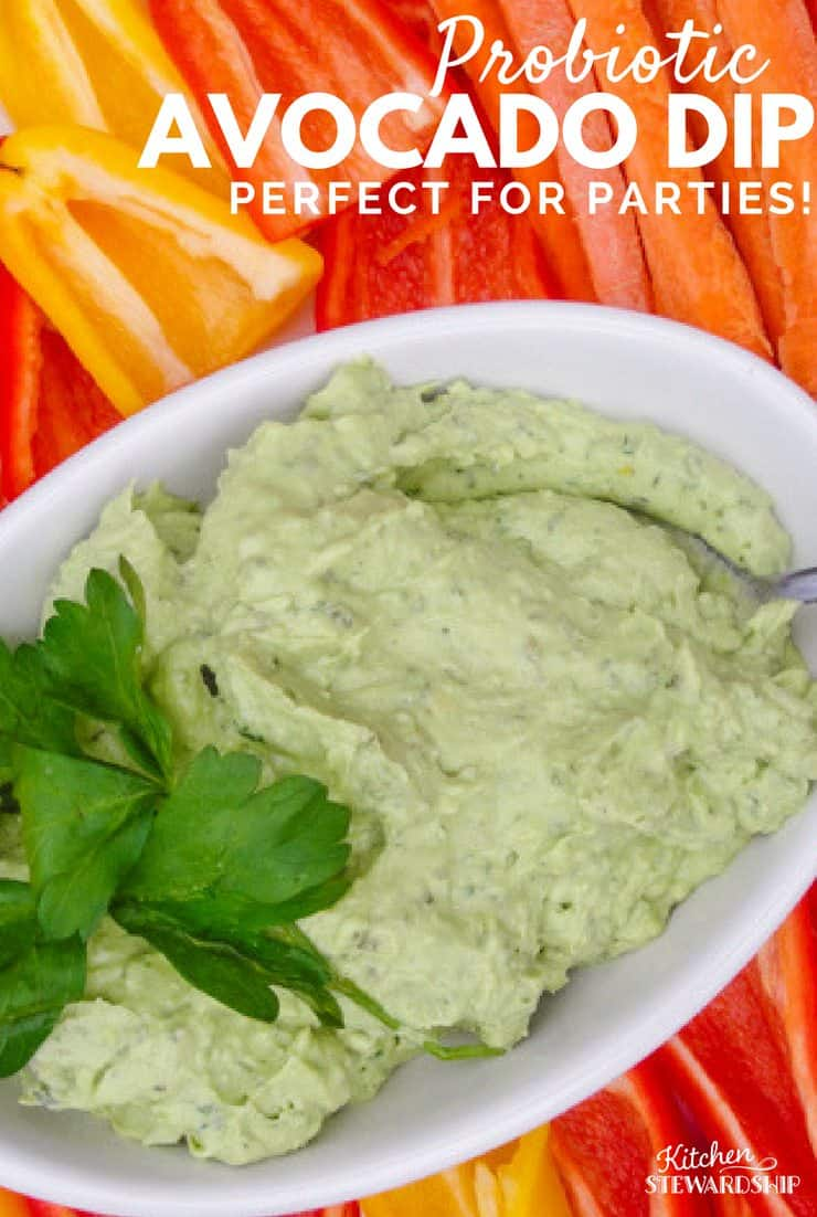 Loaded with probiotics and healthy fat this avocado dip is great for parties or an after school snack.