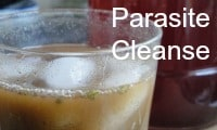 parasite cleanse and symptoms